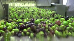 Washing Olives (1) Stock Footage