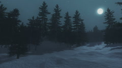 Full moon over the spruce forest at winter night Stock Footage