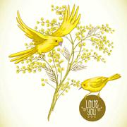 Sprig of Mimosa and Yellow Bird, Spring Background - stock illustration