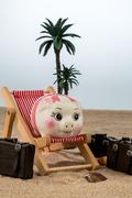 Piggy bank in a deck chair Stock Photos
