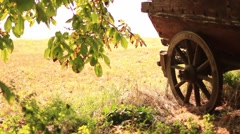 Old cartwheel in the village Stock Footage