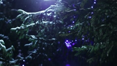 Christmas tree new year Stock Footage