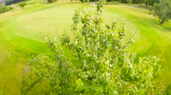 Aerial footage of golf green Stock Footage