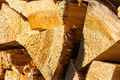 dry conifer firewood in sunlight - stock photo