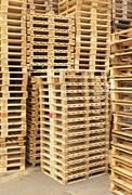 Stock of new wooden euro pallets at transportation company. Stock Photos