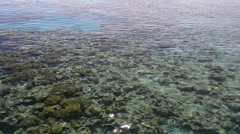 Transparent water of the Red Sea in the afternoon. Israel Stock Footage