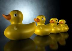 Get your ducks in a row Stock Illustration
