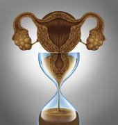 female biological clock - stock illustration