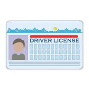 driver license - stock illustration