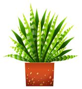 A houseplant with a pot - stock illustration