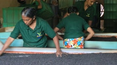 Sri Lankan women are involved in sorting and drying tea leaves in tea factory Stock Footage