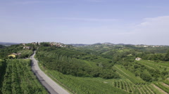 Aerial - Car passing on the road between the wine country Stock Footage