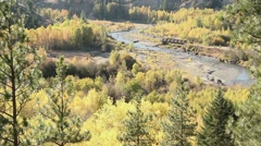 Stock Video Footage of Coldwater River Canyon Fall Colors