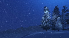 Snow-covered spruces and snowfall at night Stock Footage