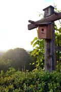 Bird house in nature Stock Photos