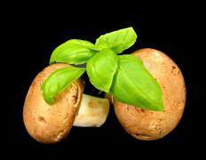 Baby Bella mushrooms and basil - stock photo