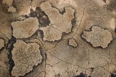 Abstract, Ancient Stone Map - stock photo