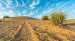 Arid Land - stock photo