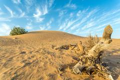 Arid Land - stock photo