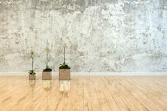 Three potted orchids on a polished wood floor Stock Illustration