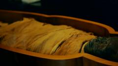 Mummy Egyptian Heritage Ancient Pharaoh Sarcophagus - stock footage