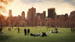 People relaxing in Central Park meadow. Colored.  Stock Footage