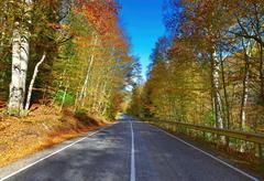 road . - stock photo