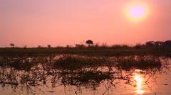 Okavango Delta in Botswana, Africa. Stock Footage