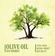 Hand drawn olive tree illustration with watercolor - stock illustration