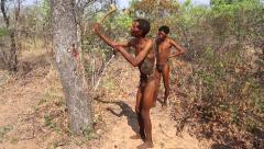 San Bushmen elder explains in click language how trees are used as food source. - stock footage