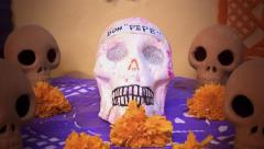 Skulls day of the dead Stock Footage