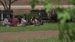 Racially-diverse students, sitting under tree, studying. Stock Footage