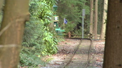 People riding miniature railway train Stock Footage