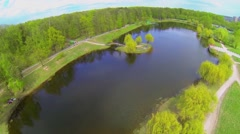 Trees with green foliage around pond at sunny spring day Stock Footage