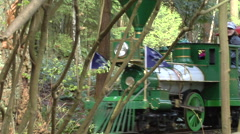 Miniature railway train passes by Stock Footage