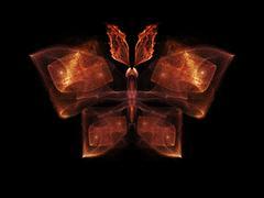 Stock Illustration of Butterfly Visualization