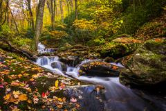 autumn color and cascades on stoney fork, near the blue ridge parkway, north  - stock photo