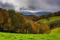 autumn color and rolling hills in moses cone park, on the blue ridge parkway  - stock photo