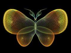 Elegance of Butterfly Stock Illustration