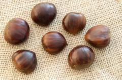 beauitful macro of chestnut in jute background - stock photo
