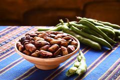 toasted fava beans - stock photo