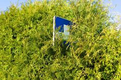 shield blue cross in the bushes - stock photo