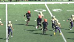 Pee Wee Youth League Mighty Mites Football-Touchdown Run Stock Footage