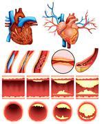 Heart cholesterol Stock Illustration