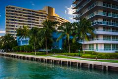 palm trees and buildings on belle isle, in miami beach, florida. - stock photo