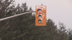 snow covered LED energy efficient traffic lights after blizzard - stock footage