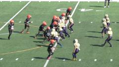 Pee Wee Youth League Mighty Mites Football-Fumble Snap Stock Footage