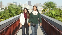 Portrait of two girl friends on a bridge, hugging and smiling into the camera Stock Footage
