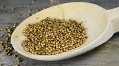 Coriander seeds Stock Footage