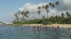 Stilt Fishing in Galle, Sri Lanka Stock Footage